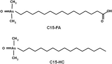 structures of an arsenic-containing fatty acid (C15-FA) and an As-containing hydrocarbon (C15-HC)